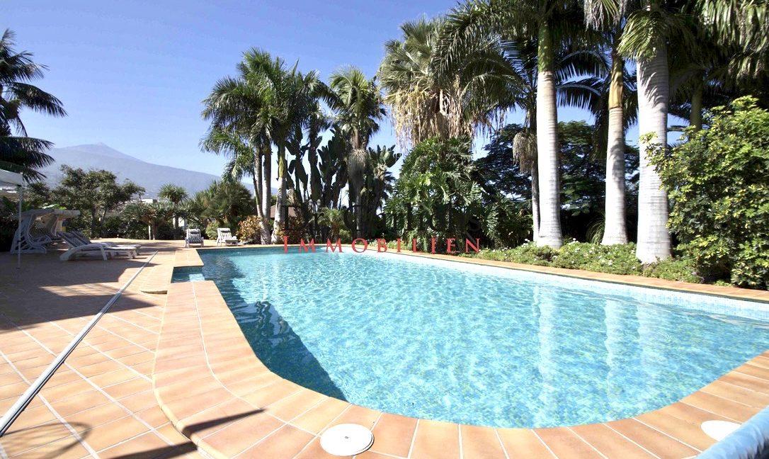 El Rincon - Teneriffa - Villa - ID1448 - 3