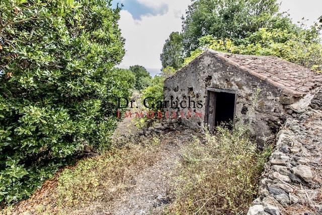 Garachico - Teneriffa - Finca - ID 1401 - 11