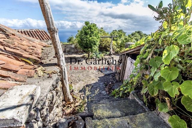 Garachico - Teneriffa - Finca - ID 1401 - 14