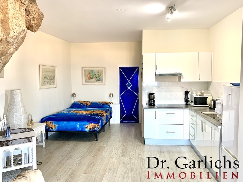Guest Apartment 1