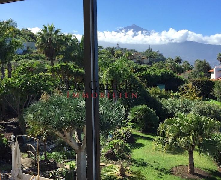 Garden - Teide View