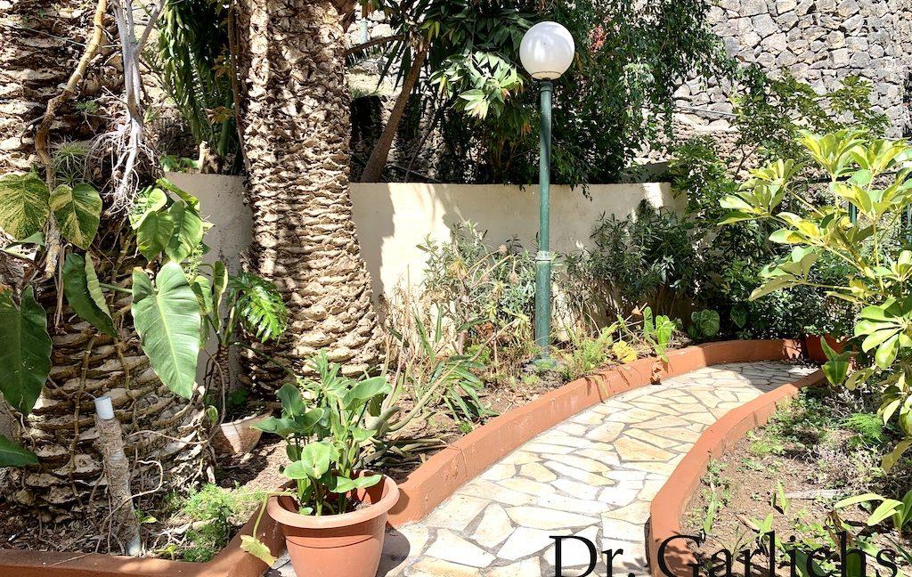 18 - Puerto de la Cruz - Wohnung - Teneriffa - ID 1540 - Garten
