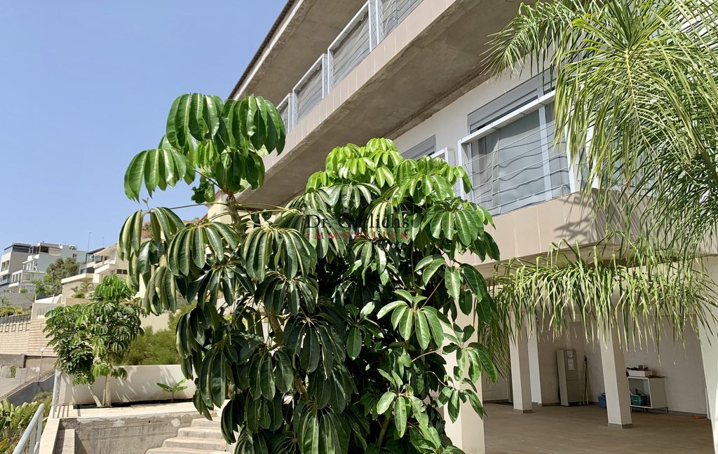 Santa Cruz de Tenerife - Haus - ID 4551 - 33