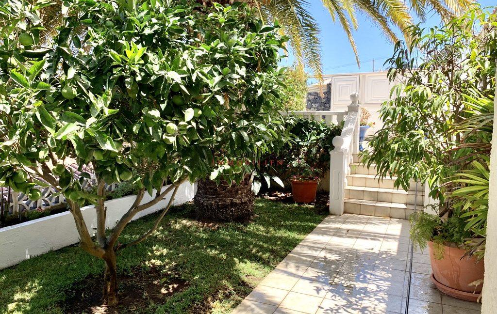 Santa Ursula - San Patricio - Teneriffa - Haus - ID 9551 - 3