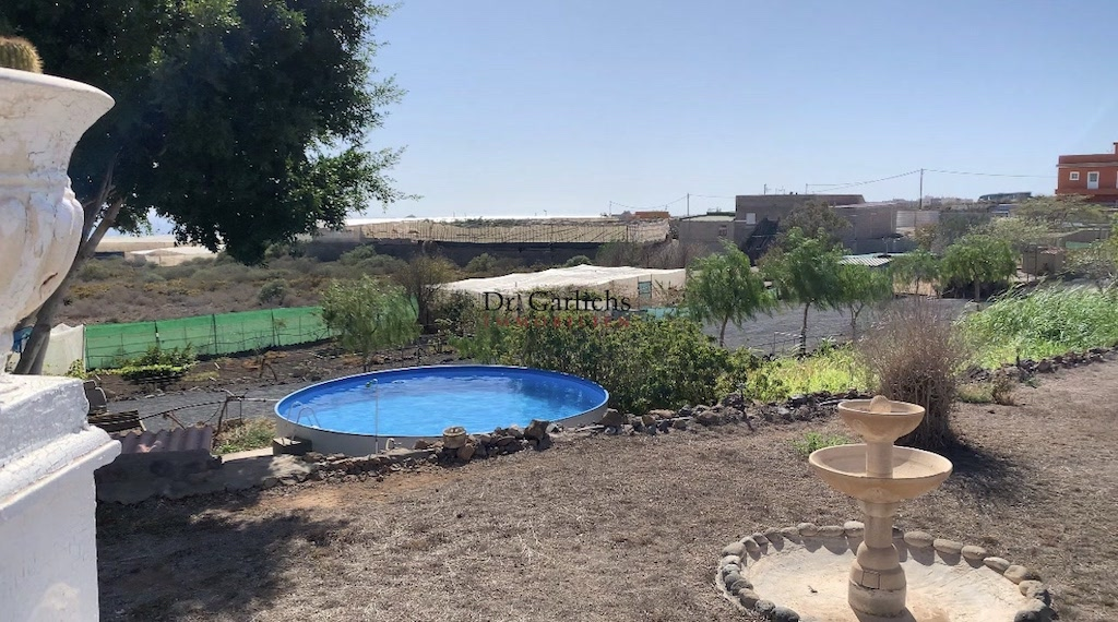 Granadilla de Abona - Teneriffa - Finca - ID 7651 - 19