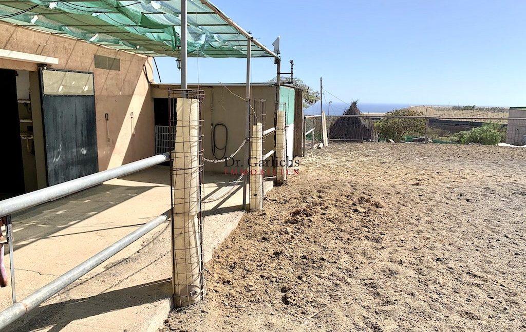 Granadilla de Abona - Teneriffa - Finca - ID 7651 - 26