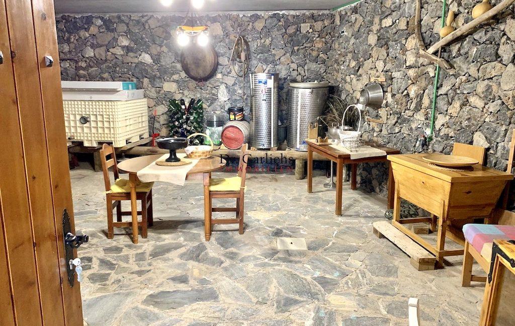 Granadilla de Abona - Teneriffa - Finca - ID 7651 - 7