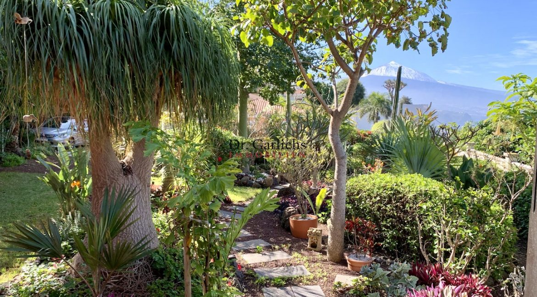 5540_El Sauzal - Teneriffa - Haus - ID 1754 - 7_4910