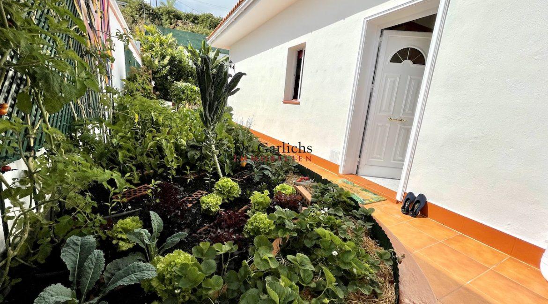 El Sauzal - Teneriffa - Haus - ID8082 - 43