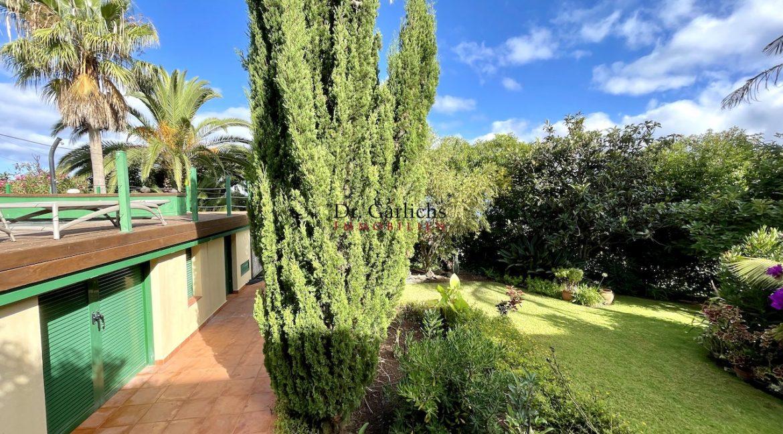 Teneriffa - Tacoronte - El Sauzal - ID5808 - 50