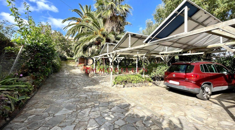 Teneriffa - Tacoronte - El Sauzal - ID5808 - 53
