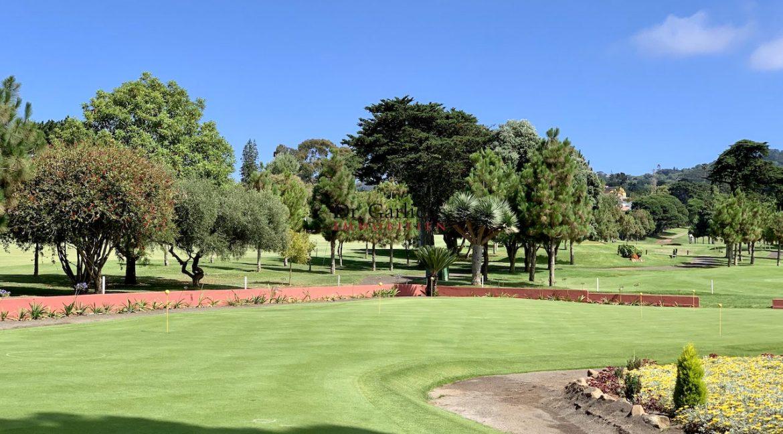 Teneriffa - Tacoronte - Golfplatz - 1