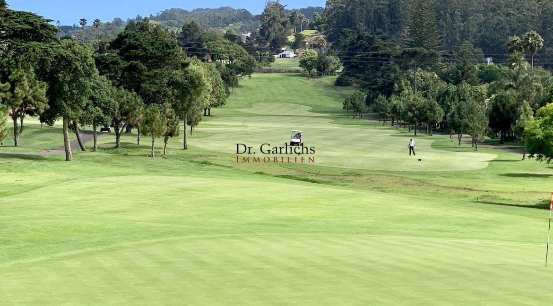 Teneriffa - Tacoronte - Golfplatz - 2