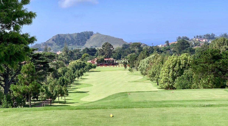 Teneriffa - Tacoronte - Golfplatz - 3